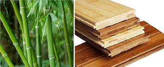 Bamboo floors are as durable as Oak or Maple hardwood and come in a wide selection of colors and styles.